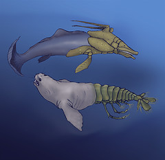 peceses